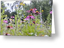 Panoramic Bouquet Greeting Card