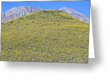 Panoramic View Of Desert Gold Yellow Greeting Card