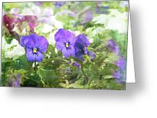 Pansy Impressions Greeting Card