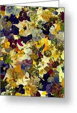 Pansy Party  Greeting Card