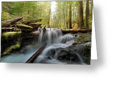 Panther Creek In Gifford Pinchot National Forest Greeting Card