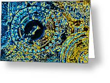 Panther Wheel Abstract Greeting Card