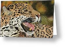 Panthera Greeting Card