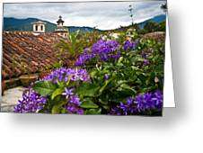 Panza Verde Hotel Rooftop 1 Greeting Card