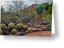 Papago And Barrels Greeting Card