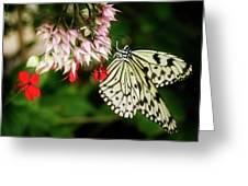 Paper Kite Greeting Card