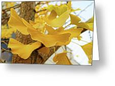 Paper Leaves Greeting Card