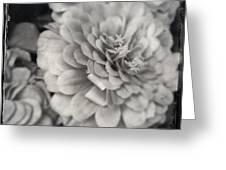 Paper Mache Greeting Card