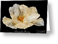Paper Peony Loving By Giving Greeting Card