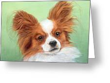 Papillion Greeting Card