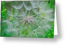 Parachutes For Seeds Greeting Card