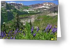 Paradise Basin Greeting Card