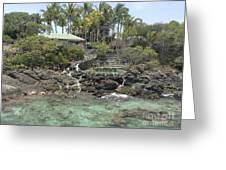 Paradise In Coki Greeting Card