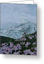 Paradise Mount Rainier Greeting Card