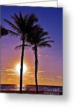Paradise Palms Greeting Card