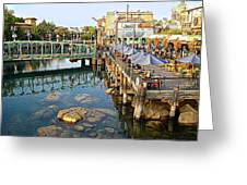 Paradise Pier At California Adventure Greeting Card
