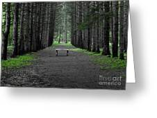 Parallel Pines Greeting Card