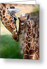 Parent-child Relationship Greeting Card by Yuri Peress