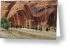 Paria River In Paria Canyon-vermillion Cliffs Wilderness Greeting Card