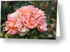 Paris Garden Roses Greeting Card