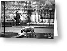 Paris Old Woman And Dog Greeting Card