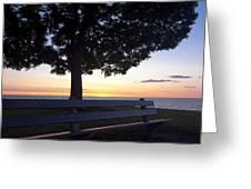 Park Bench At Dawn Greeting Card