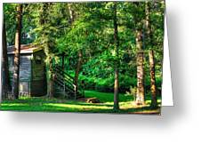 Park Chalet Greeting Card