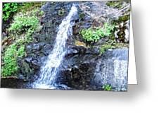 Parker Creek Falls Greeting Card