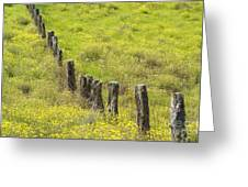 Parker Ranch Fence Greeting Card