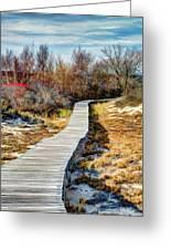 Parker River Nwr Boardwalk Greeting Card