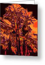 Parking Lot Palms 1 11 Greeting Card