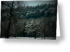 Parks Winter Glory Greeting Card