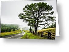 Parkway Mist Greeting Card