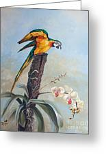 Parrot And Orchid Greeting Card