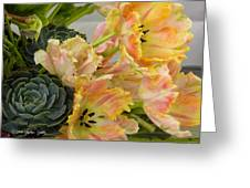 Parrot Tulips And Desert Succulents Greeting Card