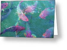Parrotfish Of The Keys Greeting Card