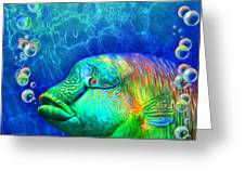 Parrotfish - Rainbow Spirit Greeting Card