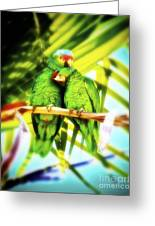 Parrotheads 2016 Redux For Shirts Greeting Card