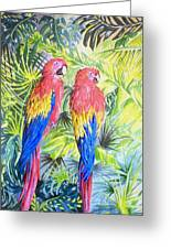 Parrots In Jungle Greeting Card