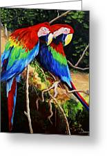 Parrots In The Jungle Greeting Card