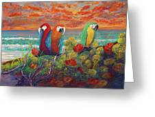 Parrots On Sunset Beach Greeting Card
