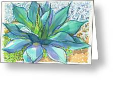 Parrys Agave Greeting Card