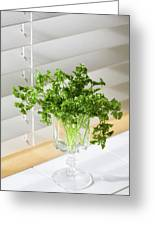 Parsley Bouquet Greeting Card