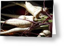 Parsnips In Sun Greeting Card