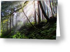 Parting Of The Mist Greeting Card