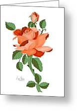 Party Colored Rose Greeting Card