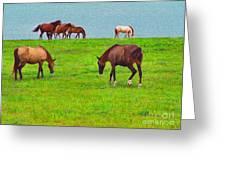 Paso Fino Horses Graze By Seaside Greeting Card