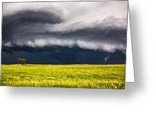 Passing By - Storm Passes By Lone Tree In Western Nebraska Greeting Card