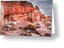 Passing Time At Red Rock Greeting Card