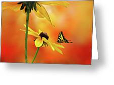 Passion 3 Greeting Card